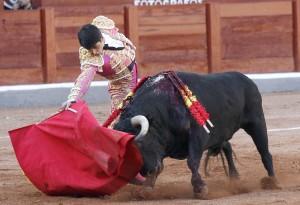Castaño170