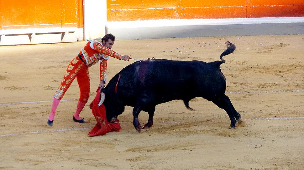 Toros-Corpus-2015-Fandi-Cayetano-Ponce-22
